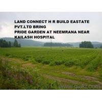 Pride Garden
