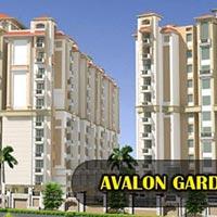 Avalon Gardens