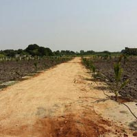 Farm Land for Sale in Chevella Mandla, Greater Hyderabad
