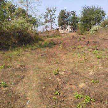 Farm Land for Sale in Murbad