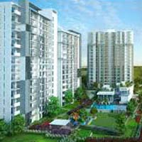 Flats & Apartments for Sale in Dwarka Expressway, Gurgaon