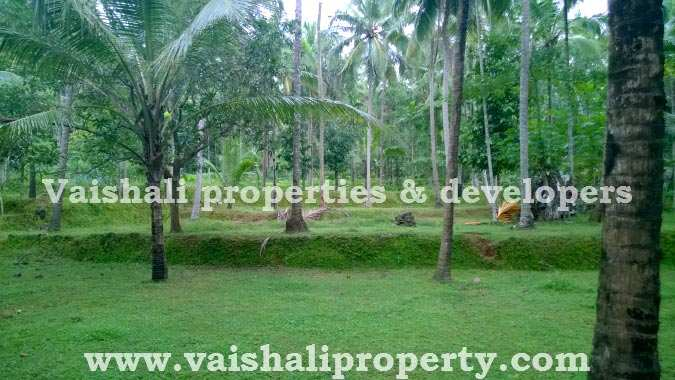25 Cent Residential Land / Plot for Sell in Calicut