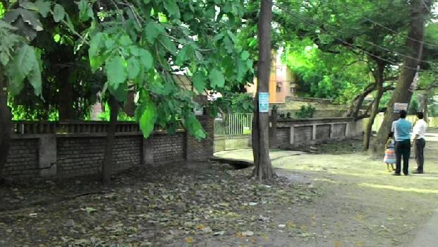 Citizen Ananda