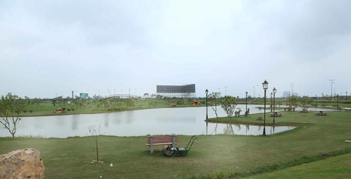 16th Park View