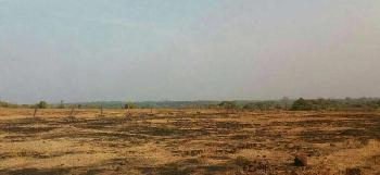 Rajapur Oil Refinery