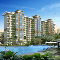 Palm Terraces Select