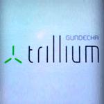Gundecha Trillium