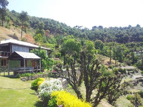Auramah Valley