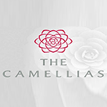 The Camellias