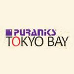 Puraniks Tokyo Bay Ghodbunder Road