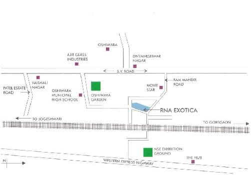 RNA Exotica