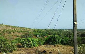 MIDC near area Land Dealing in Rajapur