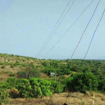 Agri Land For Sale In Rajapur Lanja Ratnagiri