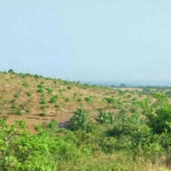 Rajapur Refinery 1000 acre rate 11 lac MIDC Land sale near MIDC