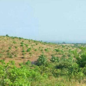 Rajapur Refinery 2000 acre Resale property forsale