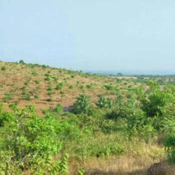 MIDC Land For Sale In Rajapur, Refinery Ratnagiri