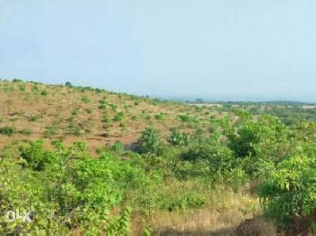 Resale 250 acre property Rajapur Refinery