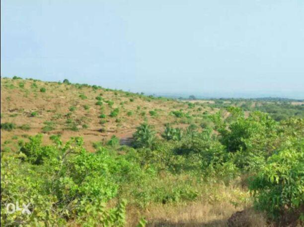 Rajapur Refinery  Land dealing