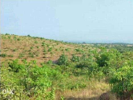 MIDC Commercial Land For Sale In Rajapur, Ratnagiri