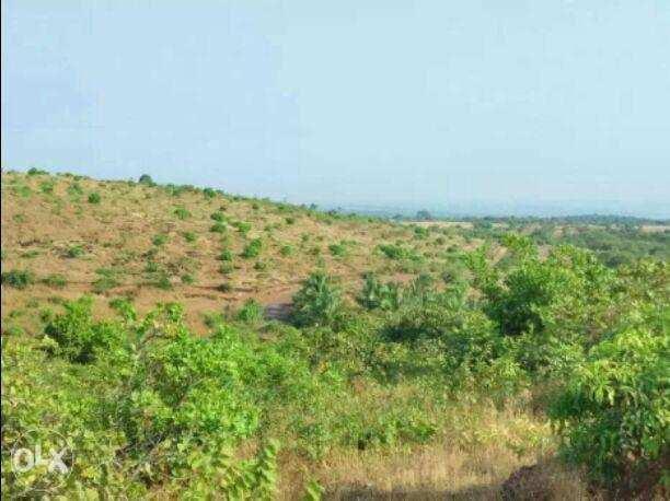 MIDC Commercial Land For Sale In Rajapur, Ratnagiri