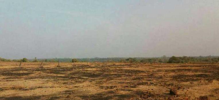 Rajapur  land  sell  agent  through