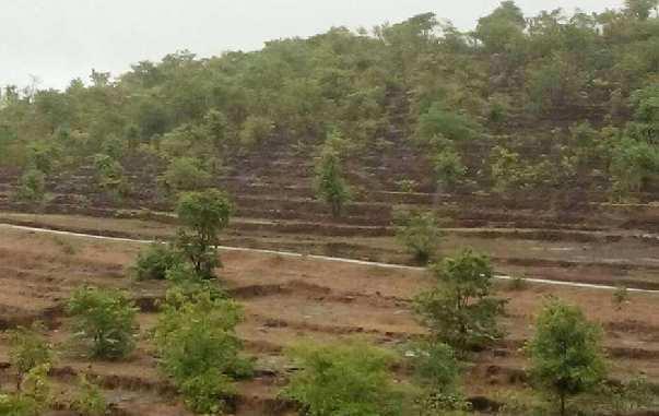 Oil Refinery project Rajapur Ratnagiri