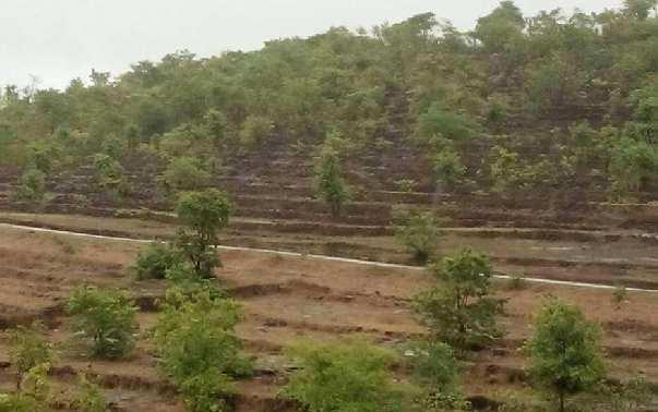 Nanar Rajapur  clear Refinery land dealing  - RAMIZ