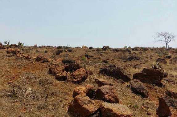 Guhagar Refinery land dealing  - RAMIZ