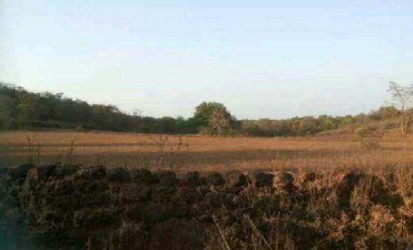 Rajapur Refinery land dealar  - RAMIZ