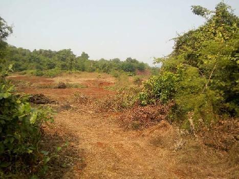 Rajapur Refinery land Sell  - RAMIZ