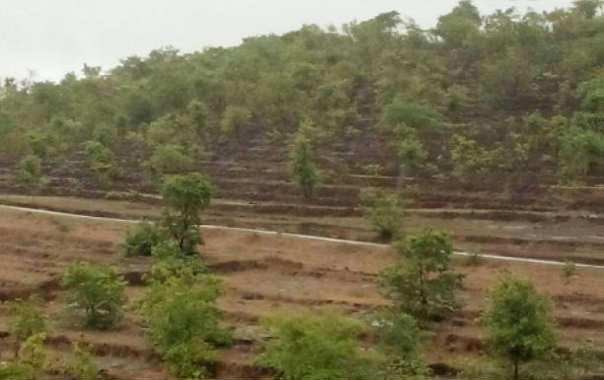 Rajapur and guhagar Refinery land Sell  - RAMIZ