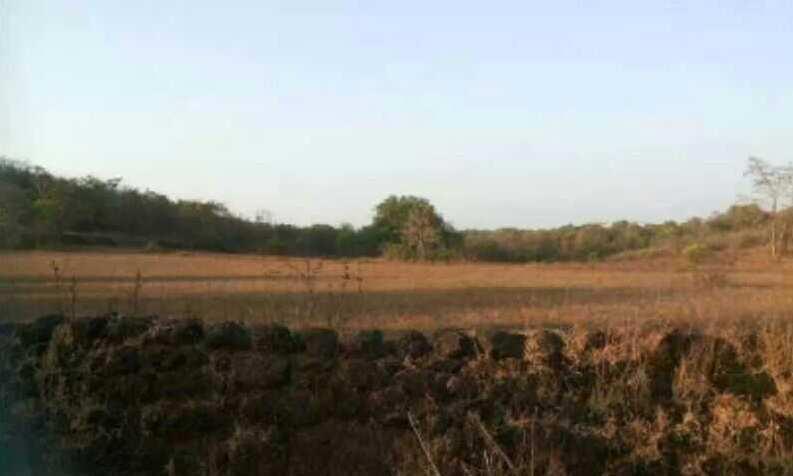 Rajapur and guhagar Refinery oil midc  land sell = RAMIZ