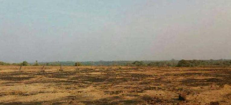Industrial Land / Plot for Sale in Rajapur, Ratnagiri
