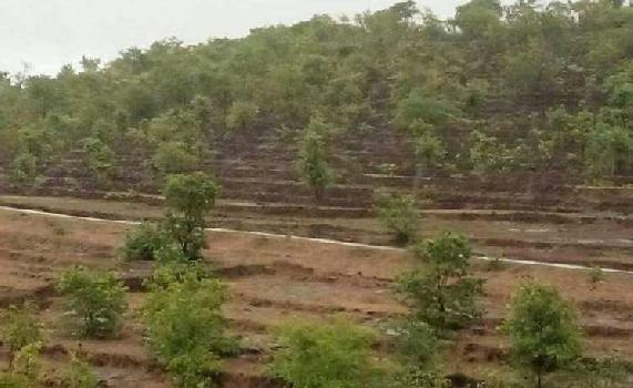Agriculture Land Sale 2 Acre to 200 Acres Budget Wise