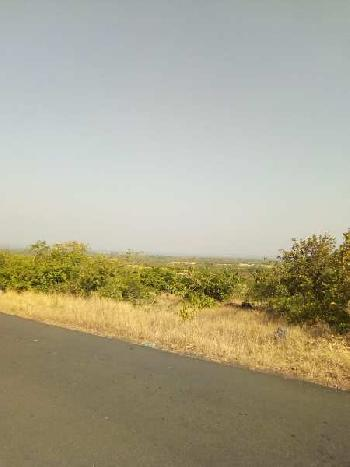 Agriculture Land / Farm Land SALE in RAJAPUR AND LANJA TALUKA AREA