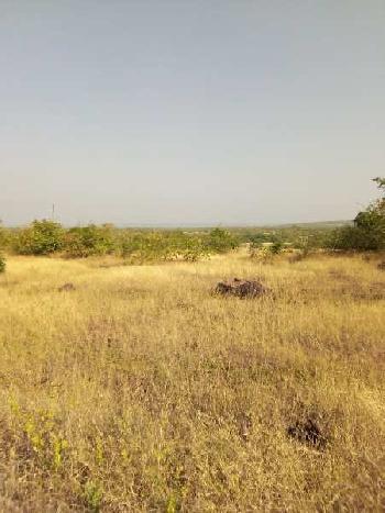 Agriculture Land / Farm Land SALE in RAJAPUR AND LANJA TALUKA AREA