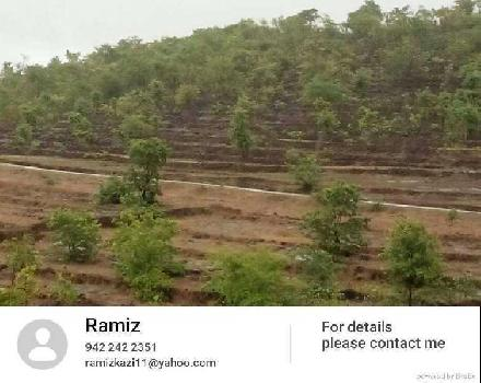 Agriculture LAND and farm LAND sell in Ratnagiri Area