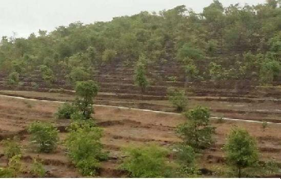 Farm LAND SALE and MIDC STAMP LAND SALE IN RAJAPUR RATNAGIRI