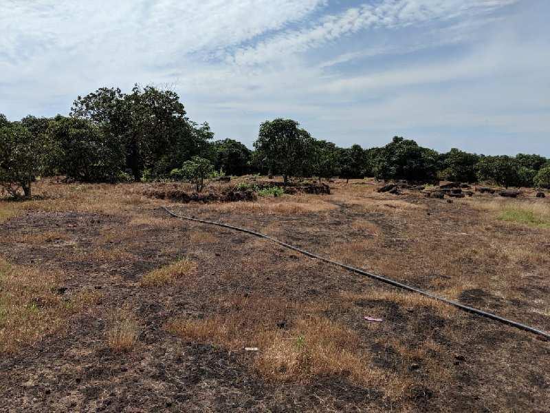 NANAR RAJAPUR REFINERY IS BACK  - RAJAPUR REFINERY MIDC STAMPS INDUSTRIAL LAND SALE