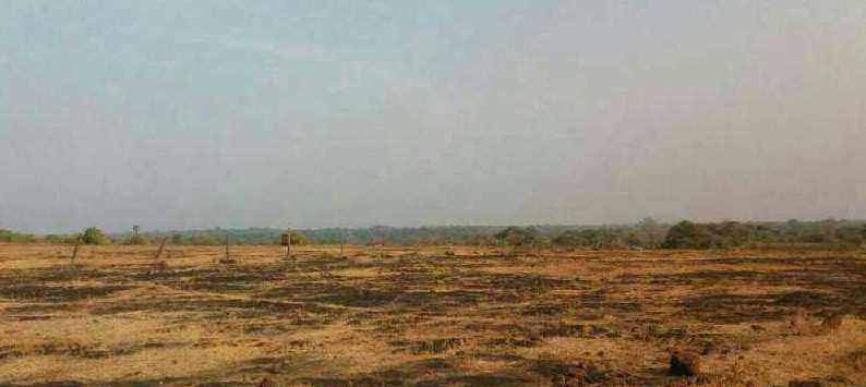 Rajapur Refinery GOTHIVRE  - SOLGAO RAJAPUR REFINERY MIDC LAND SALE IN RATNAGIRI MAHARASHTRA