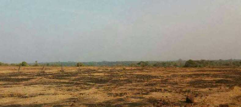 2963 Acre Industrial Land / Plot for Sale in Rajapur, Ratnagiri