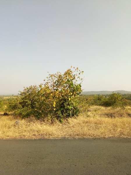 RAJAPUR REFINERY MIDC LAND SALE  at SOLGAO BARSU GOTHIVRE NANAR ETC.