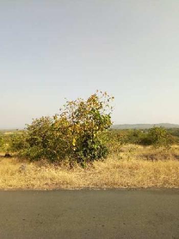 RAJAPUR REFINERY MIDC LAND SALE  - SOLGAO - BARSU NANAR GOTHIVRE