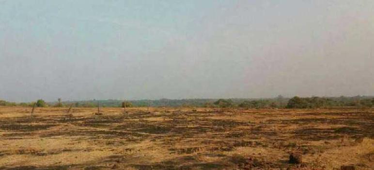 RAJAPUR REFINERY SOLGAO BARSU GOTHIVRE NANAR MIDC LAND SALE
