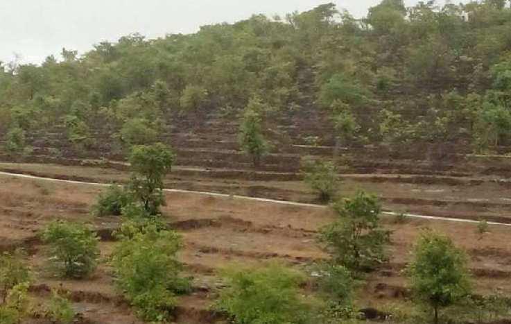 RAJAPUR REFINERY LAND  SALE  - SOLGAO BARSU GOTHIVRE NANAR TARAL UPLE ETC. MIDC AREA