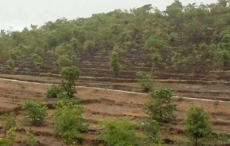 RAJAPUR REFINERY MIDC INDUSTRIAL LAND SALE