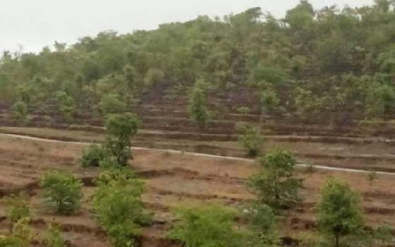 SOLGAO BARSU MIDC RAJAPUR REFINERY LAND