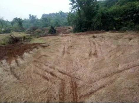 ROHA RAIGAD MIDC INDUSTRIAL LAND SALE