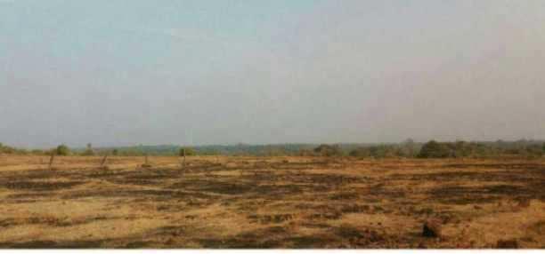 SOLGAO BARSU RAJAPUR MIDC LAND