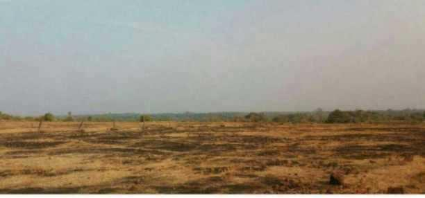 MANGAON MIDC LAND